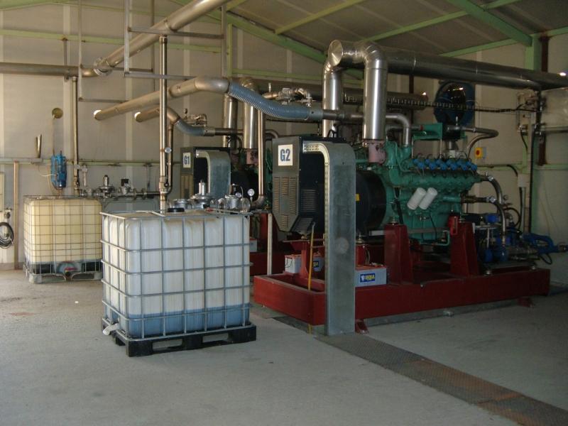 Motore endotermico per impianto di cogenerazione