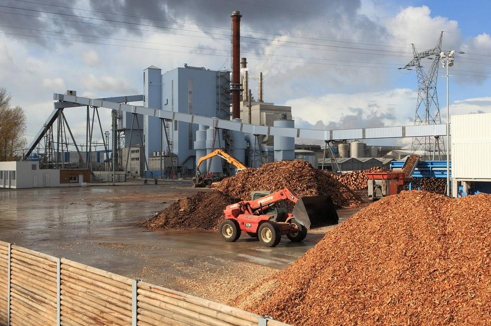 energia alternativa termoregolazione biomasse